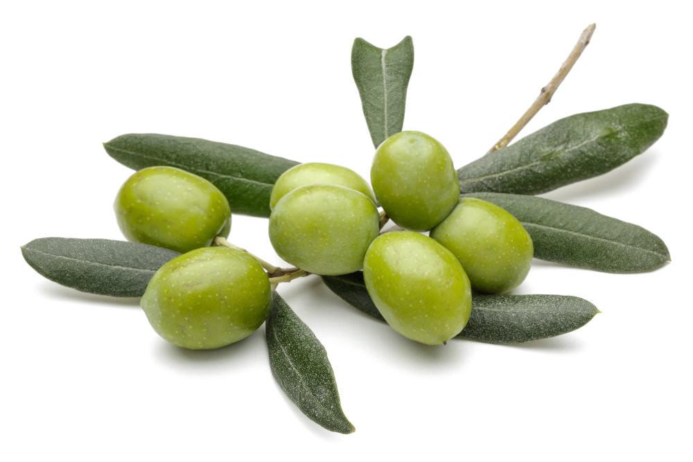 squalane olive